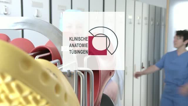 Klinische Anatomie - Sectio chirurgica - DocCheck TV