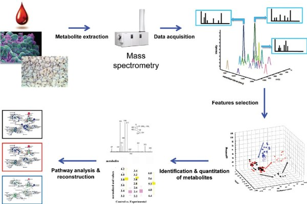 Discovery metabolomics
