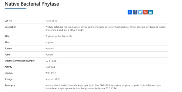 phytase supplement