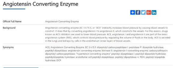 ace enzyme