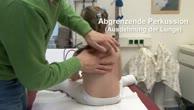 Grundlagen klinischer Untersuchung (3) - Die Untersuchung des kindlichen Thorax mit Herz und Lunge