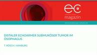 Distaler echoarmer submuköser Tumor im Ösophagus