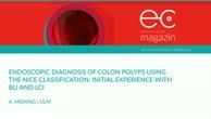 Endoscopic diagnosis of colon polyps using the NICE classification
