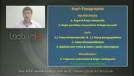 Anatomie Repetitorium - Kopf- und Halsregionen