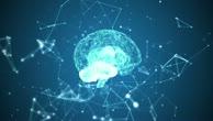 Videos vom ersten Science Slam über das Gehirn
