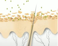 Geschützte Haut wehrt Pollen ab!