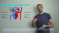 Was ist der pulmonale Rechts-Links-Shunt?