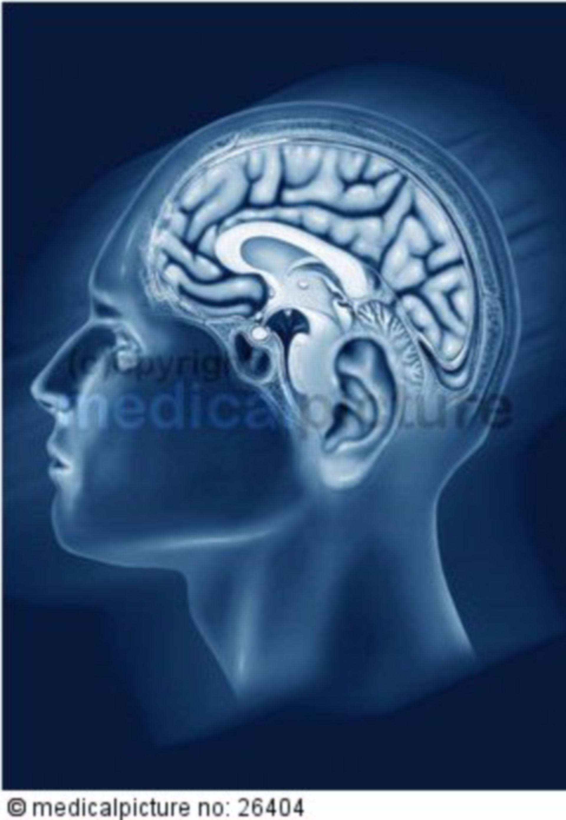 Gehirn in einfarbigem Kopf, brain in single-colored head