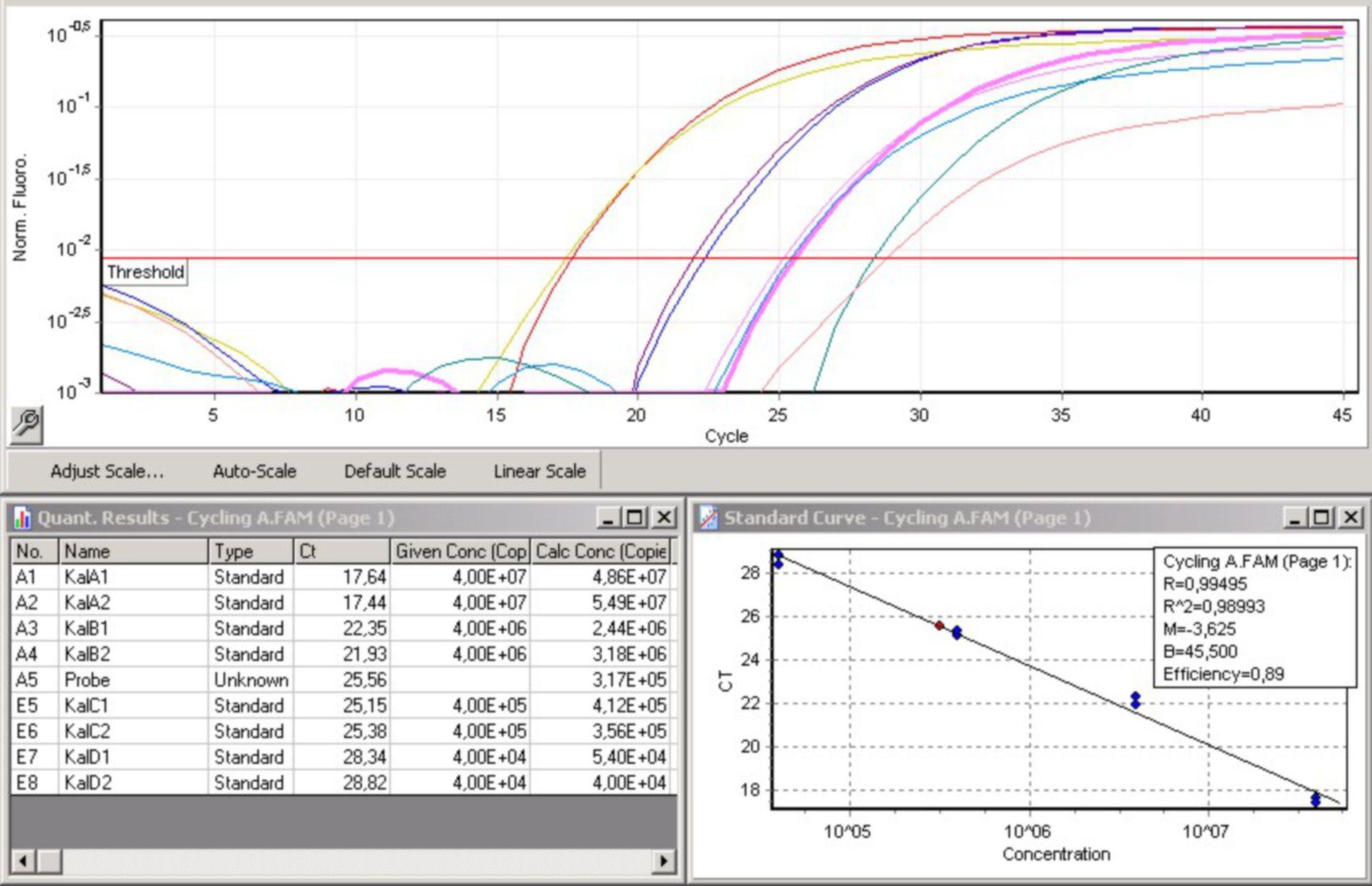 Quantifkation von DNA in einer Realtime-PCR