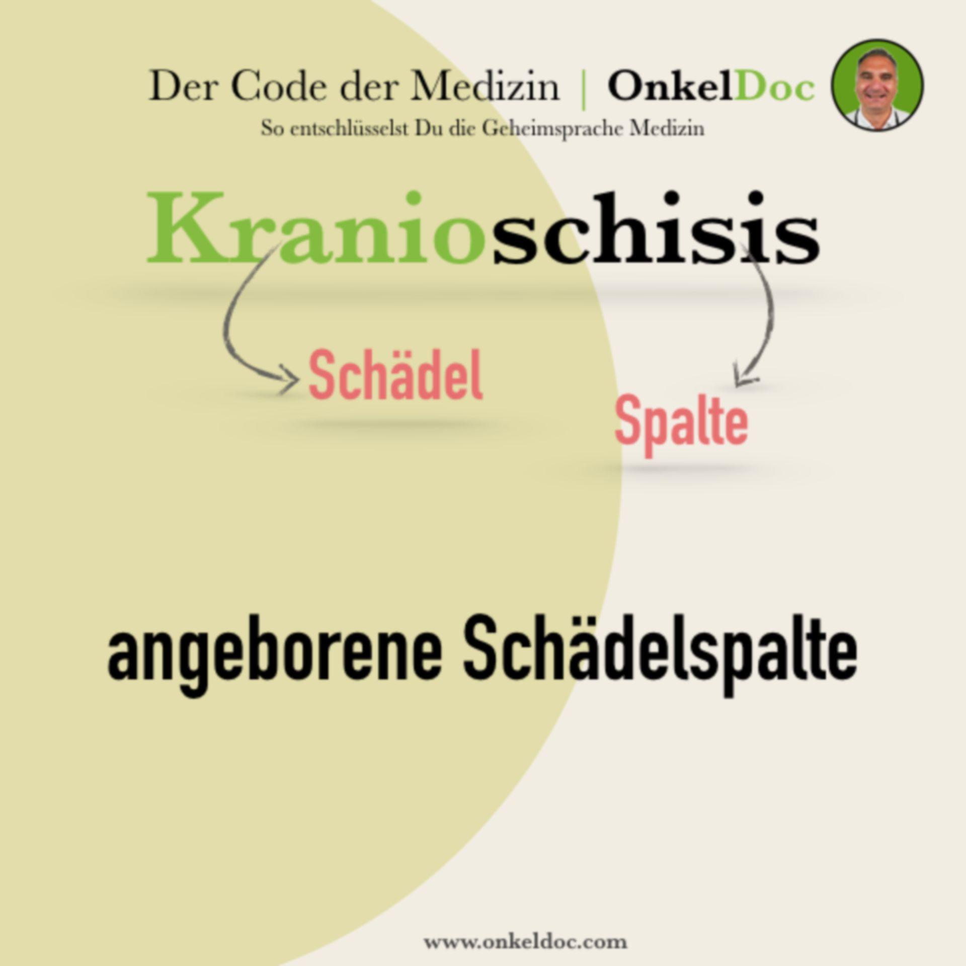 Der Code der Kranioschisis