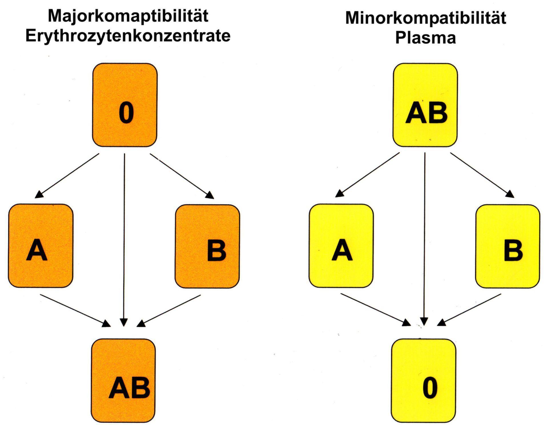 ABO-compatibility