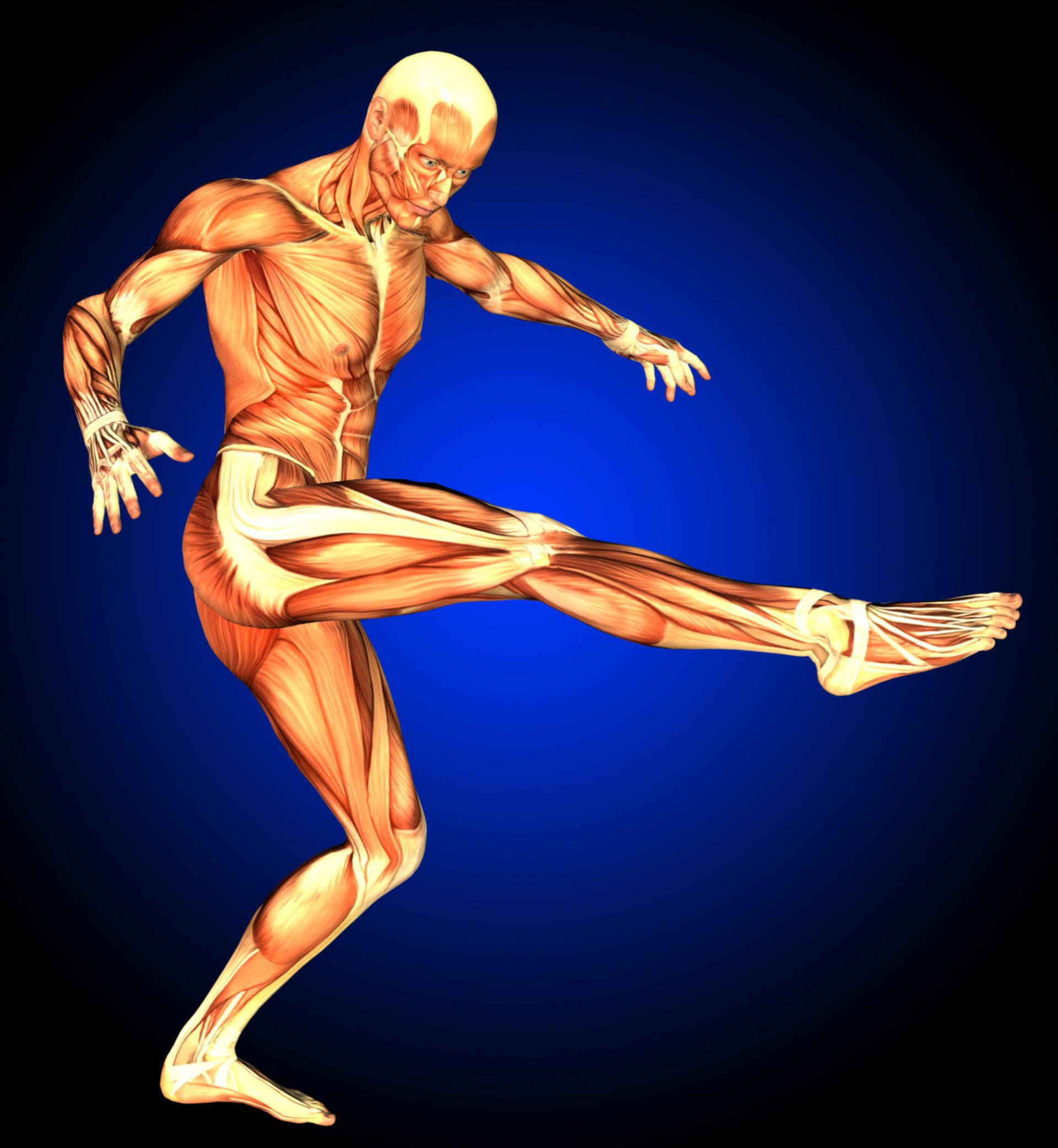 Muskelmann beim Torschuß