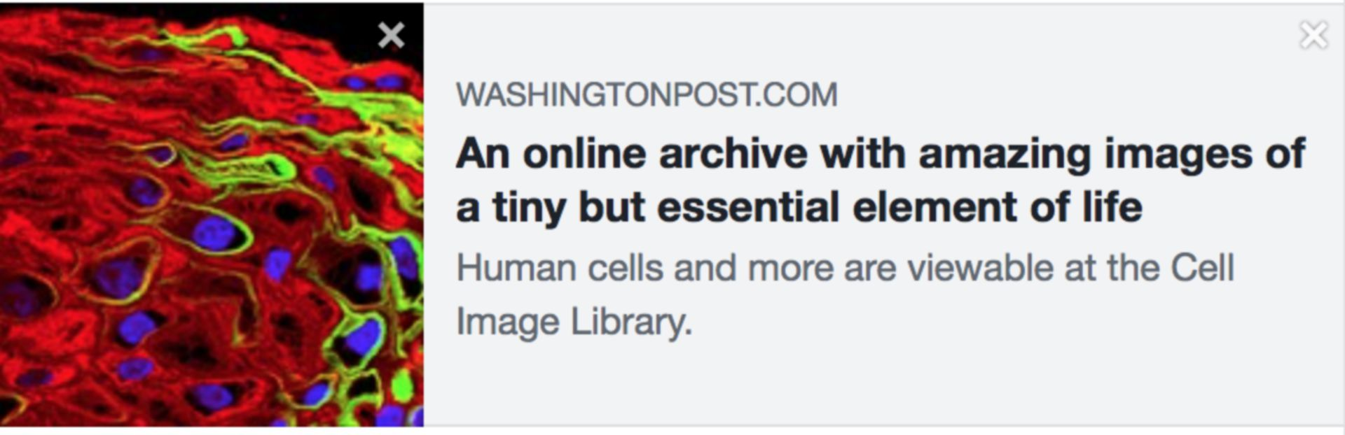 Article of the Week standing in for the Image of the Week – November 5, 2018  Great article about The Cell Image Library in The Washington Post.