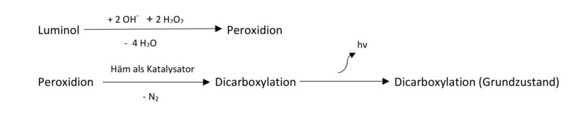 Chemolumineszenz von Luminol