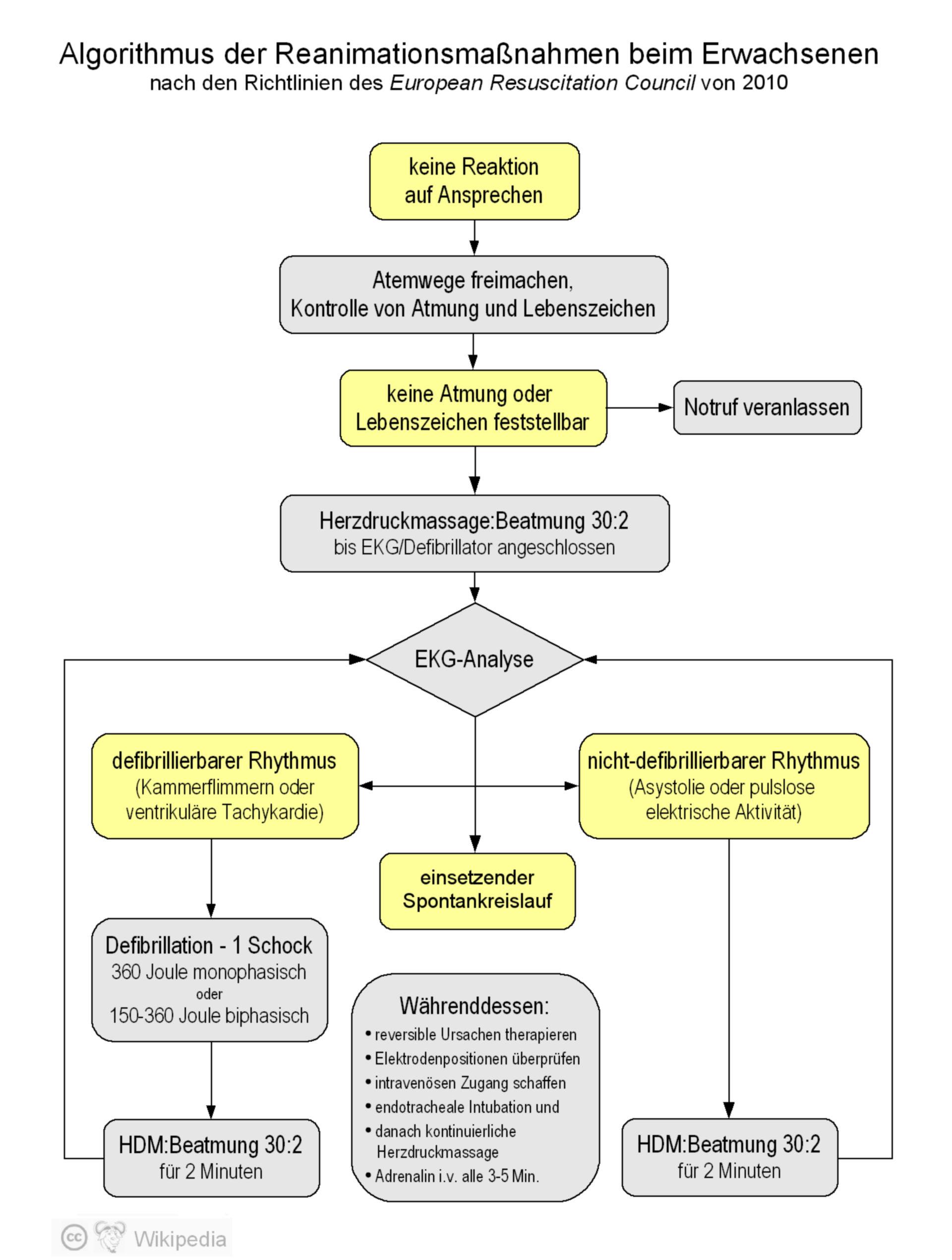 Algorithmus der erweiterten Reanimationsmaßnahmen