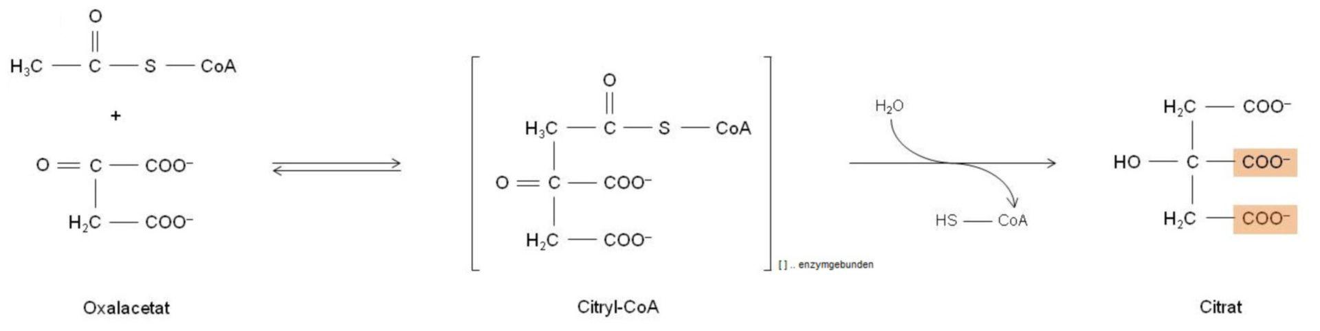 Reacción al citrato