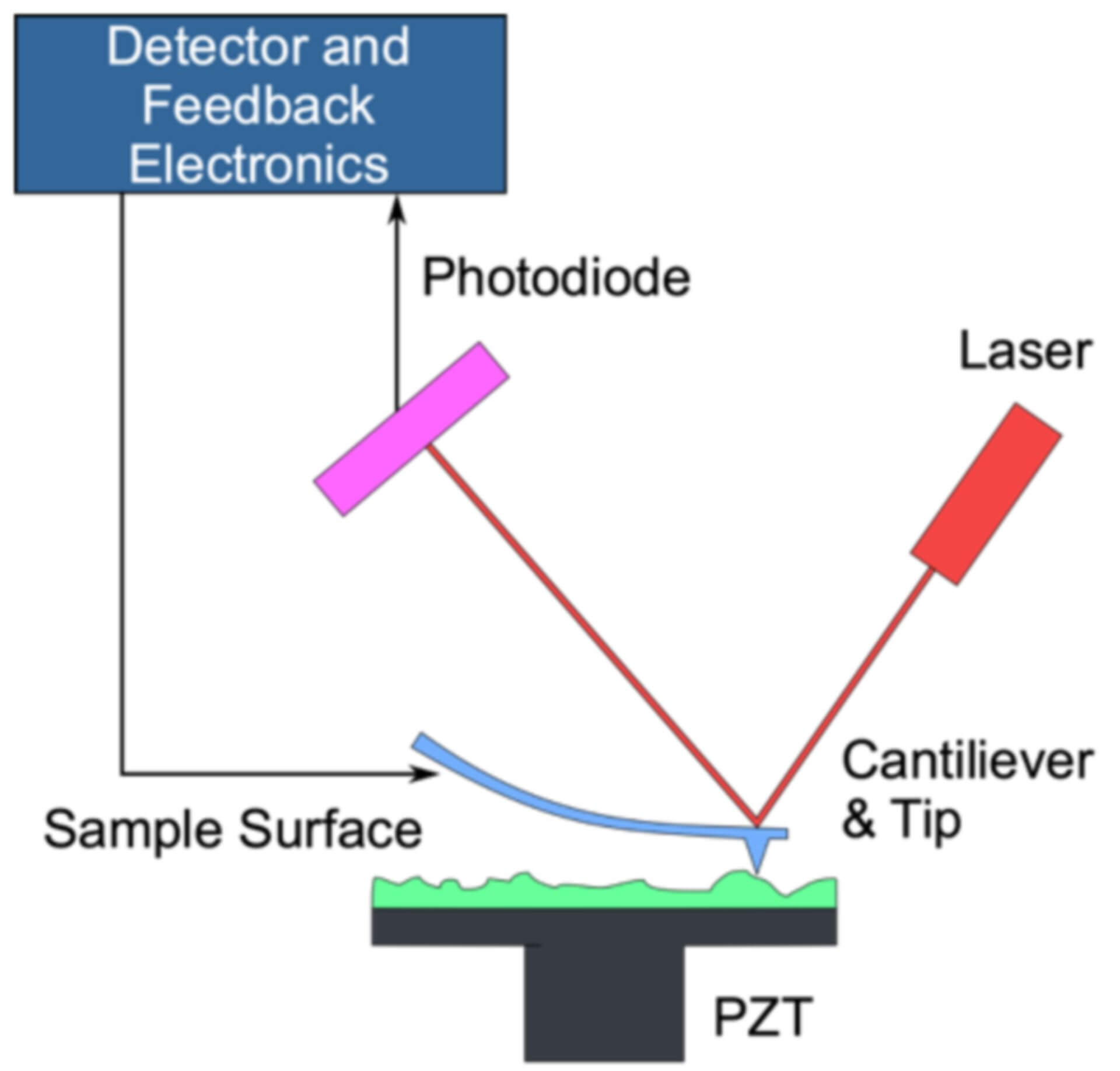 Atomic Force Microscopy Service
