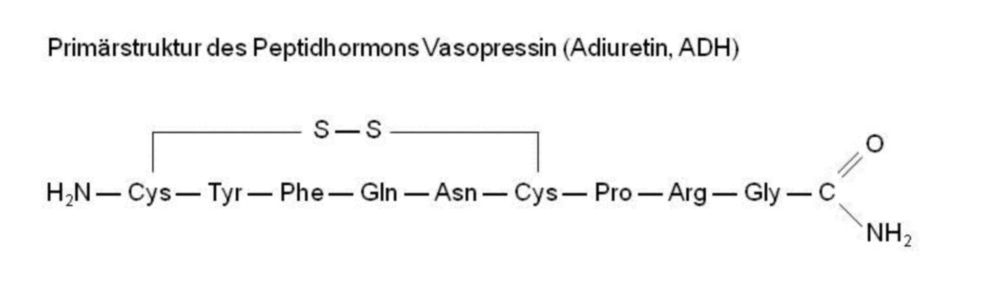Struttura primaria - ormone peptidico vasopressina