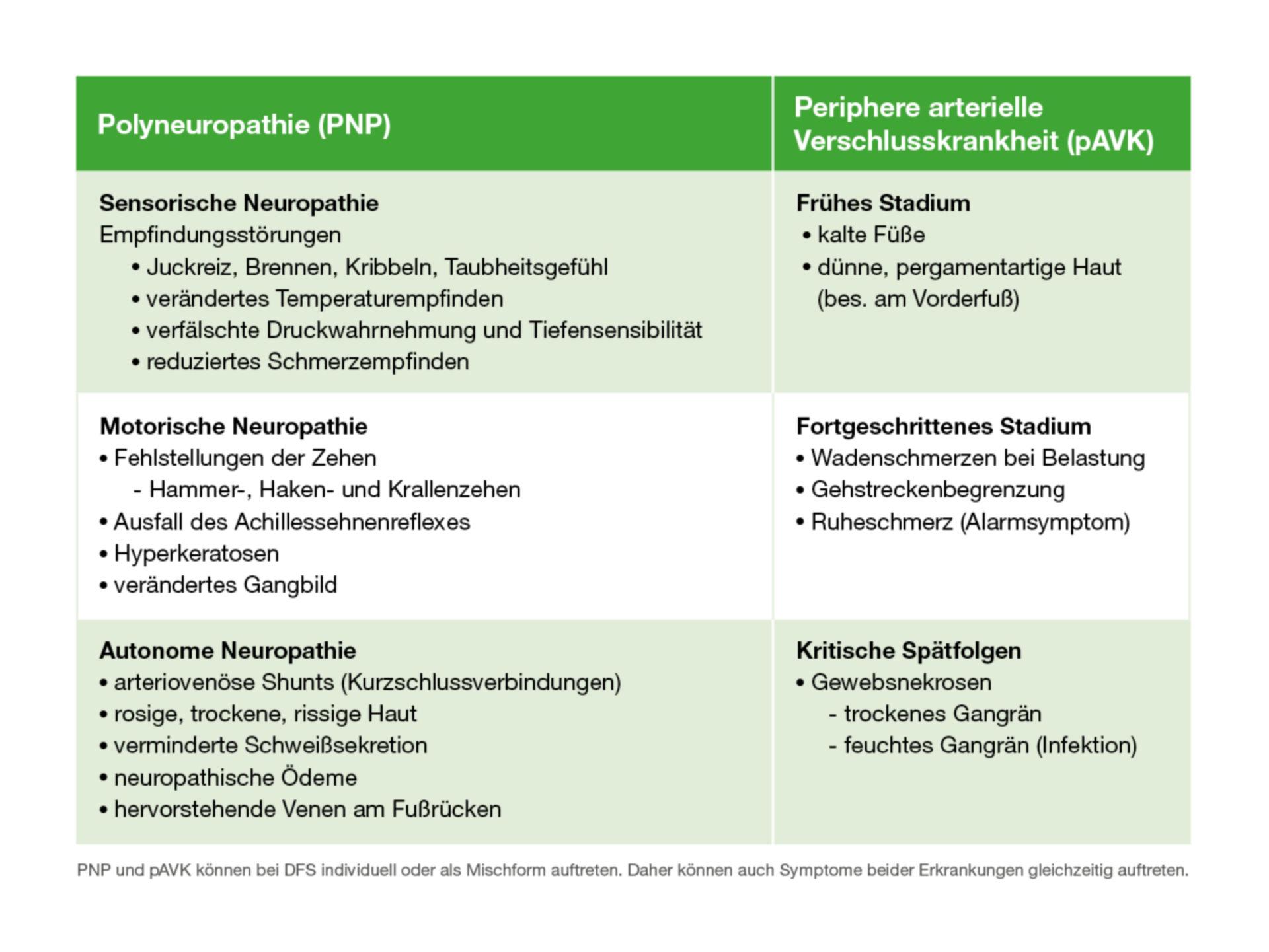DFS: Symptome der PNP und pAVK auf einen Blick