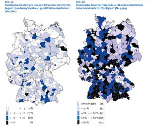 Im Süden und im Osten häufen sich die Fälle von TBC-Kranken, die im Ausland geboren wurden. Die Aufteilung in NUTS-Regionen ist eine europäische Systematik zur statistischen Erfassung.