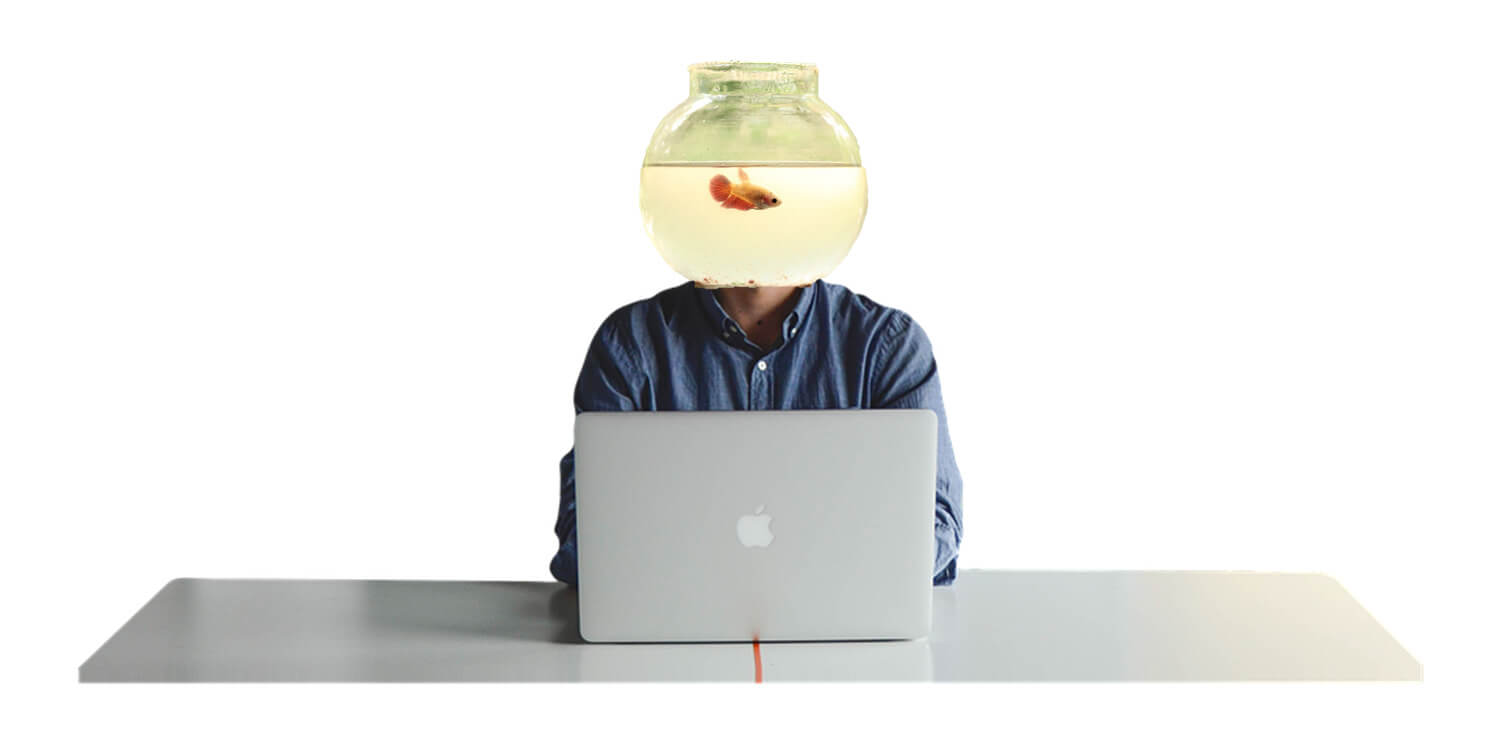goldfish_original.jpg