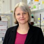 Prof. Dr. Susanne Klaus