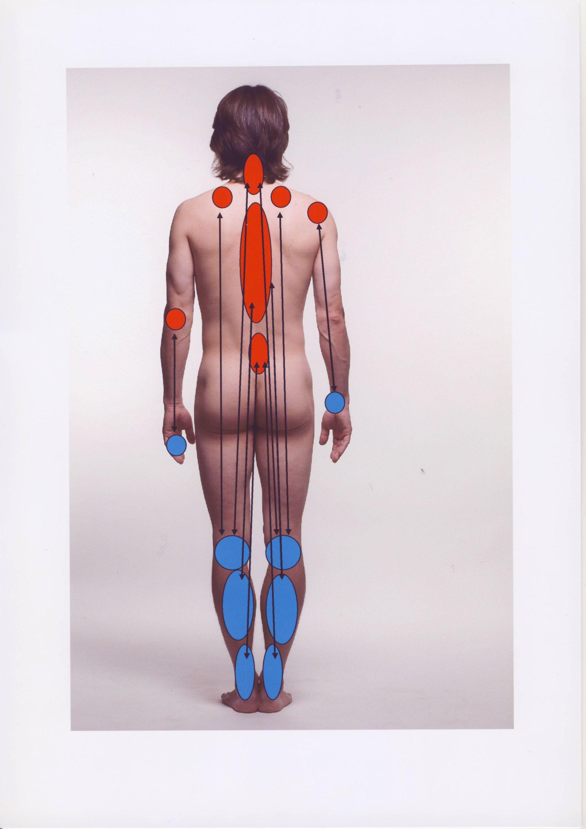 Schmerz-Therapie: ibis-Therapie  dorsal