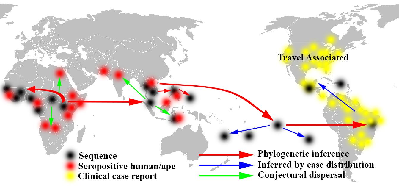 Zika_phylogenetic_analysis_map