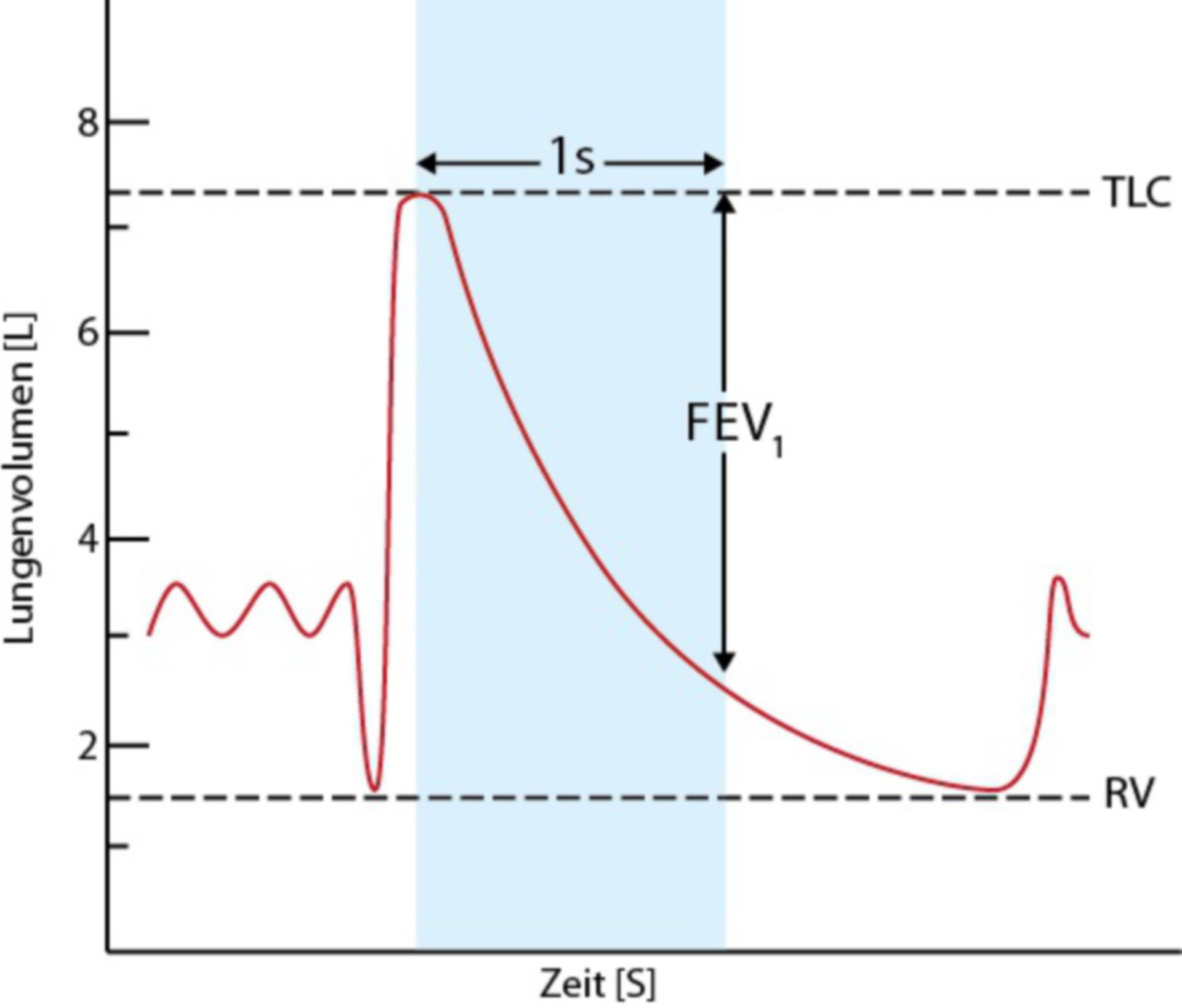 Lunge Tiffeneau-Test (FEV1)