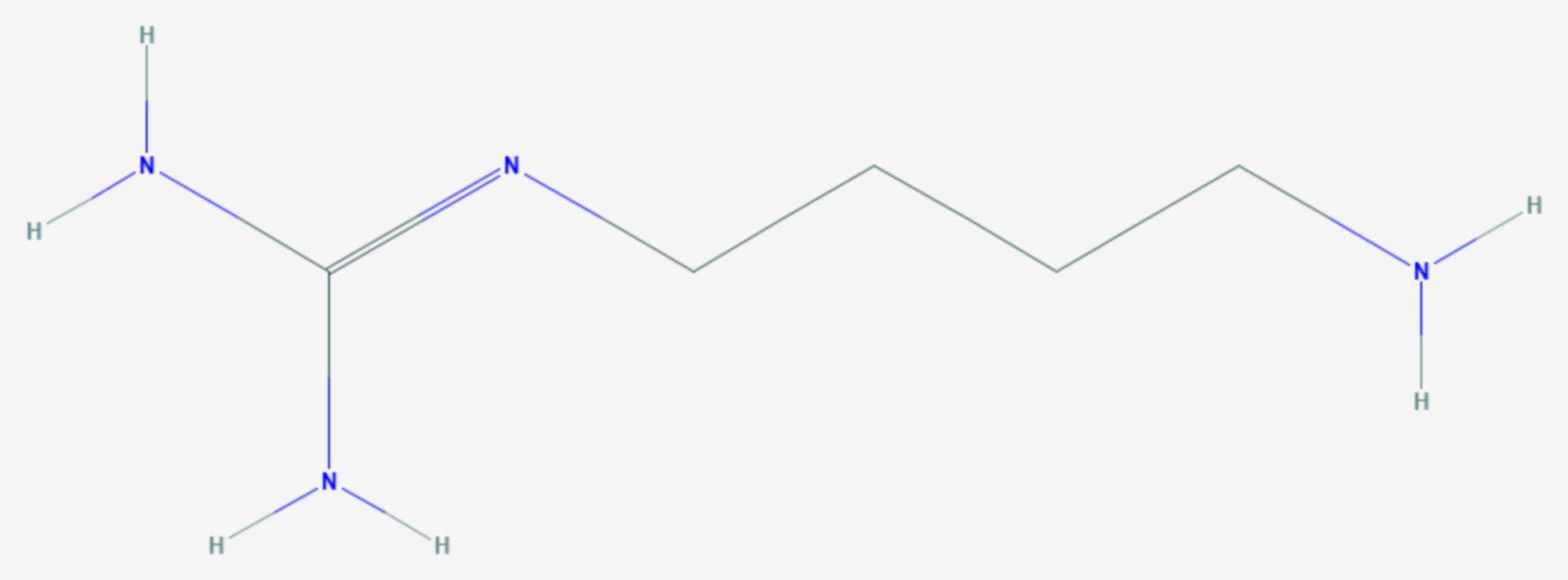 Agmatin (Strukturformel)