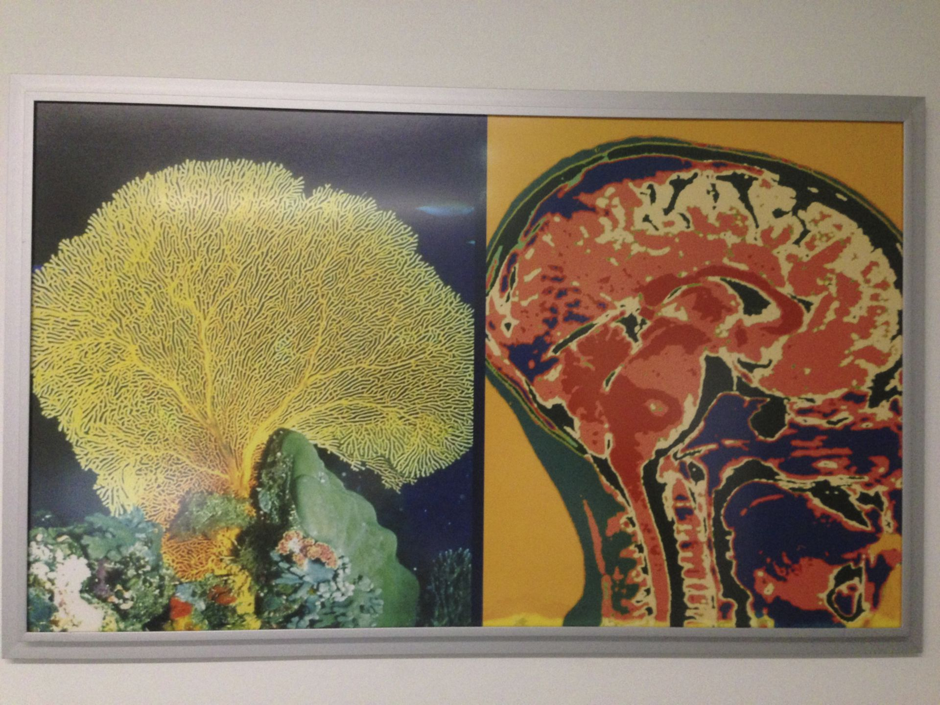 Medizin und Kunst 3