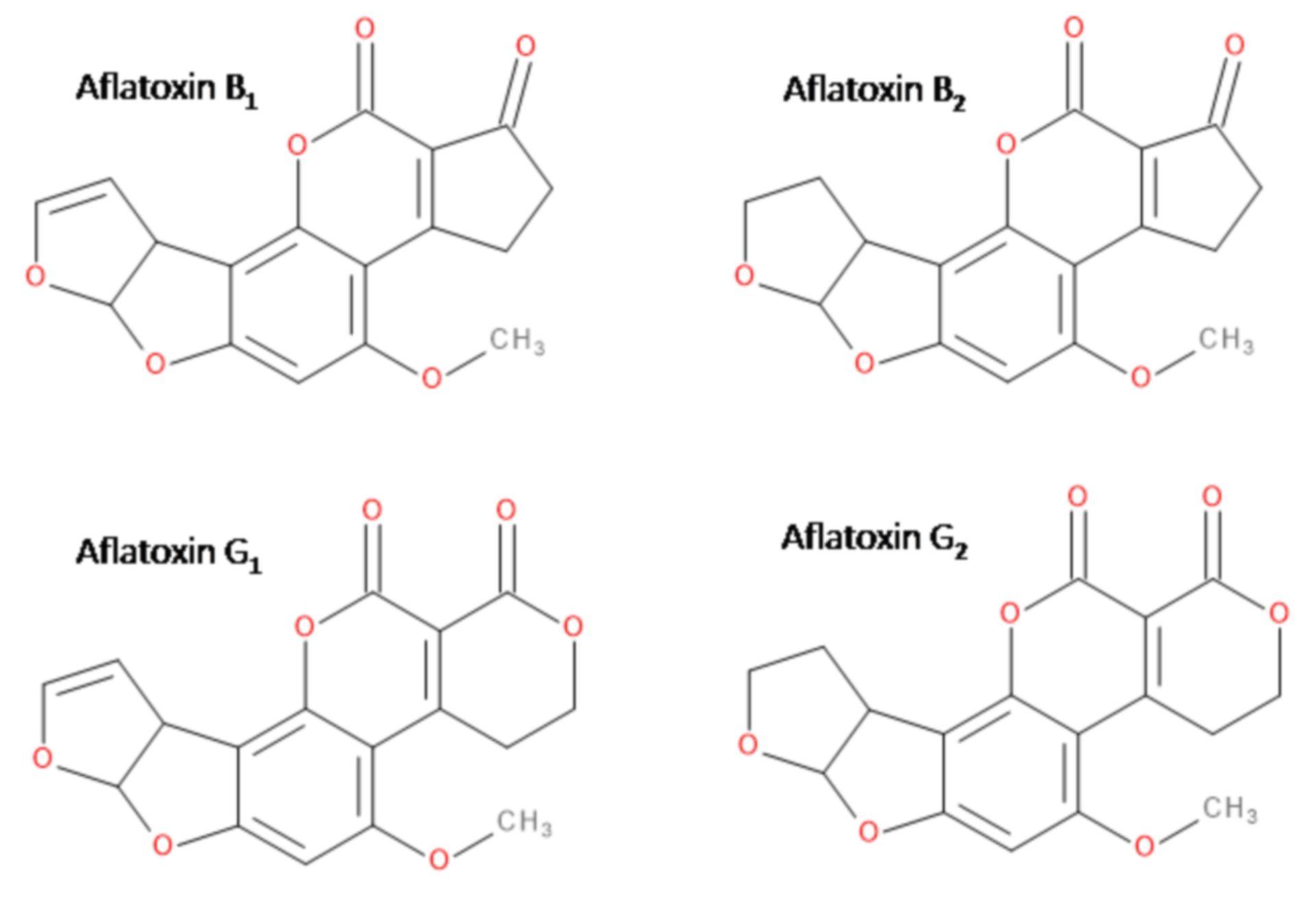 Aflatoxine