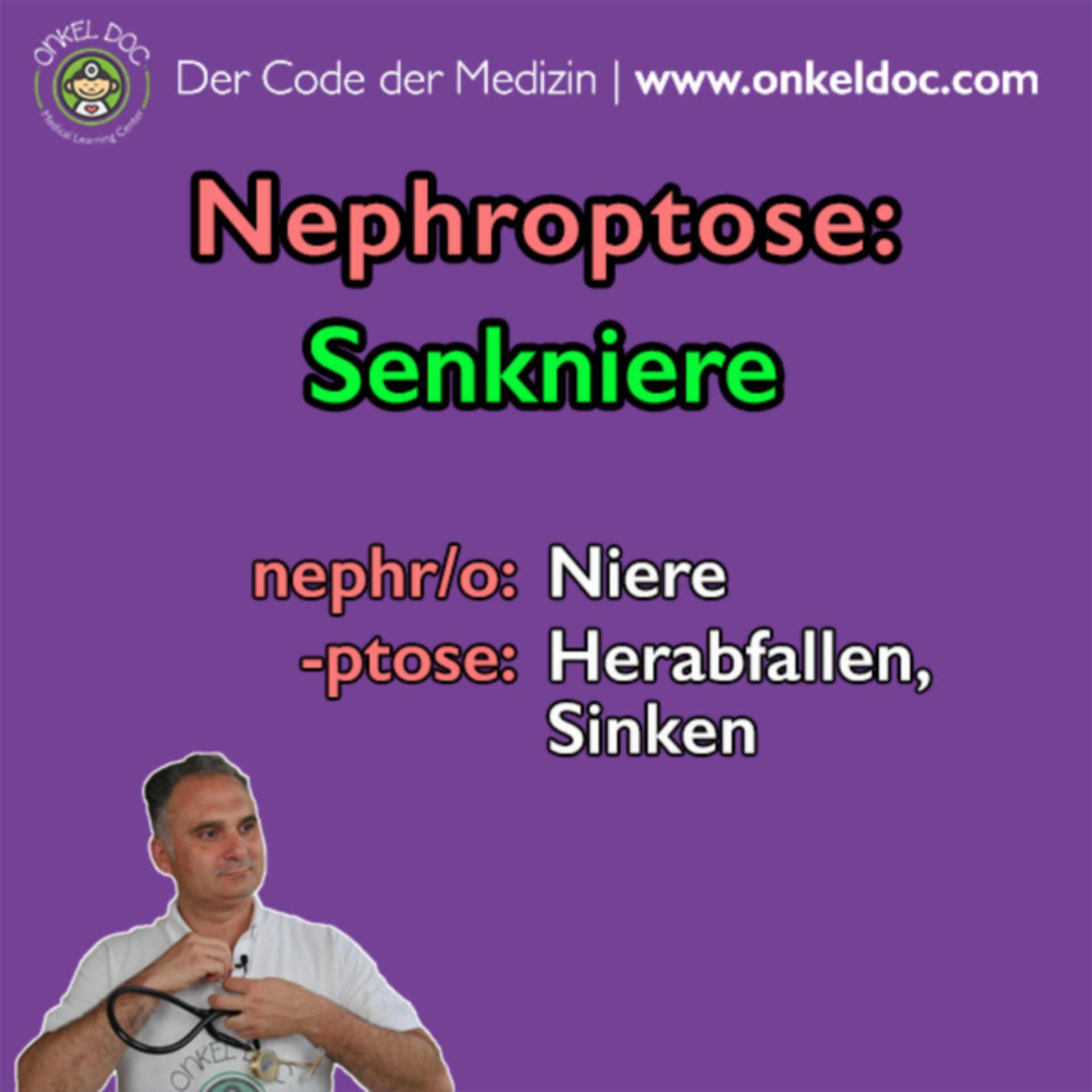 Der Code der Nephroptose