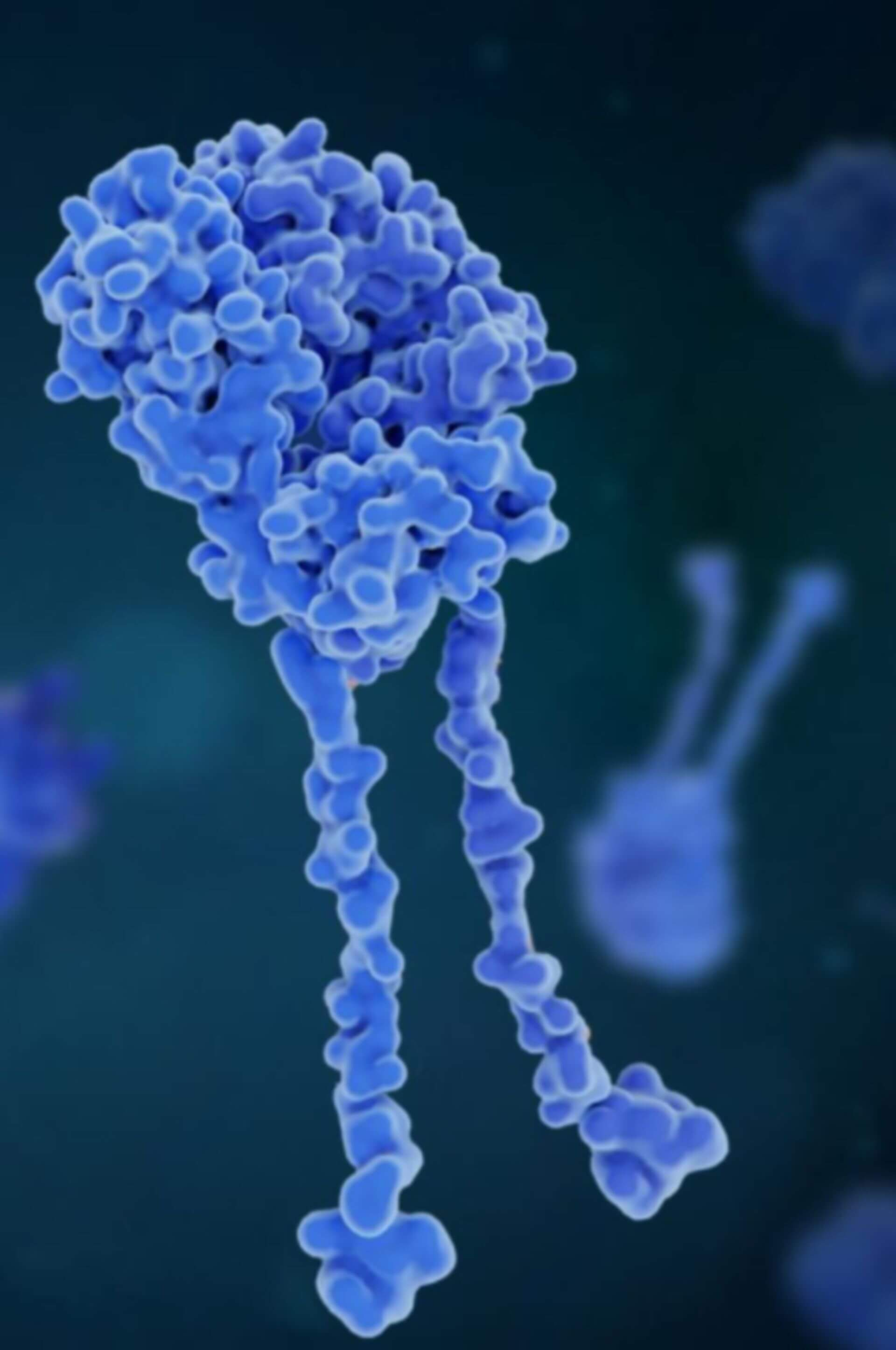 What Are CAR-T Therapies