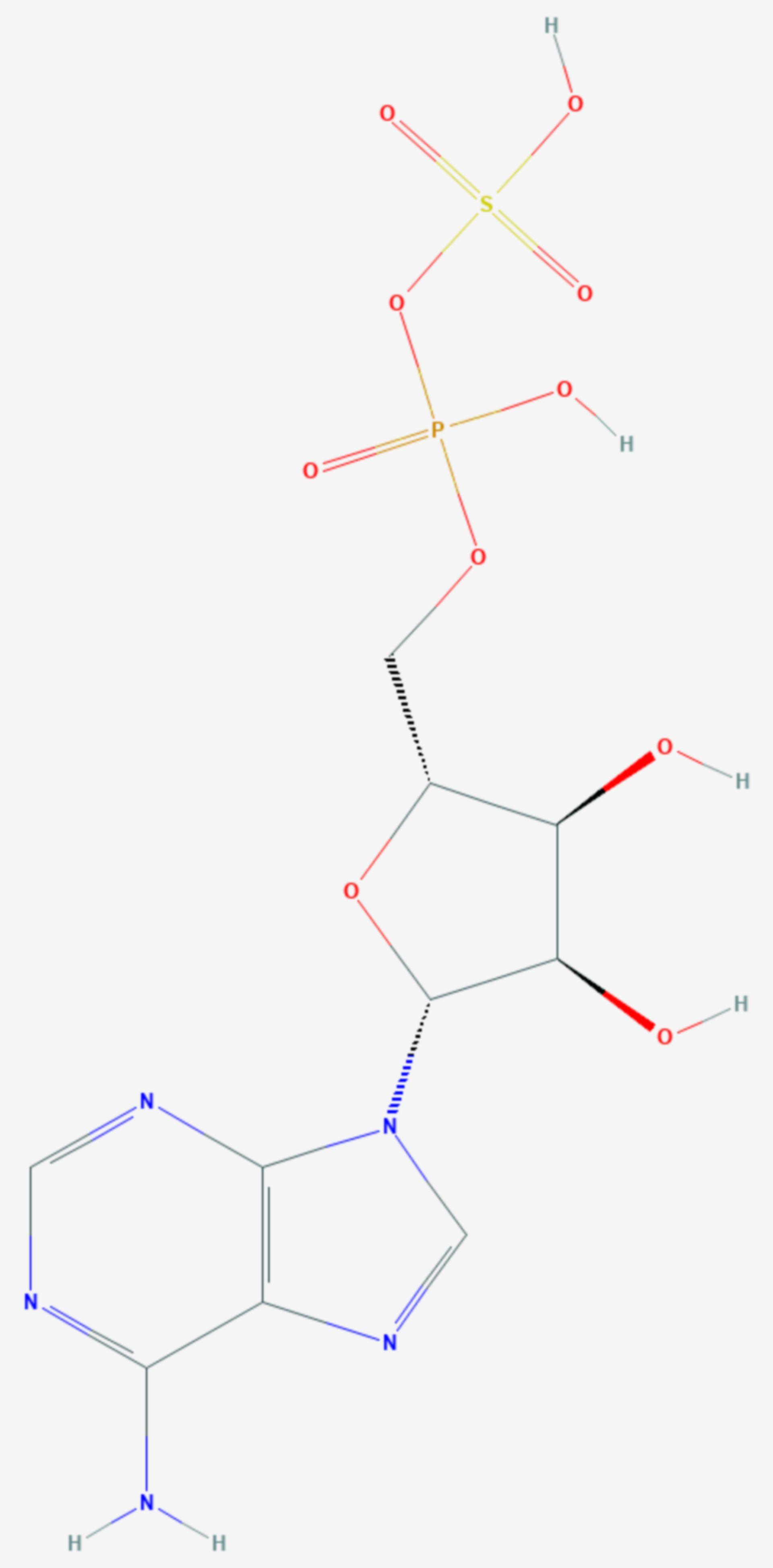 Adenosinphosphosulfat (Strukturformel)