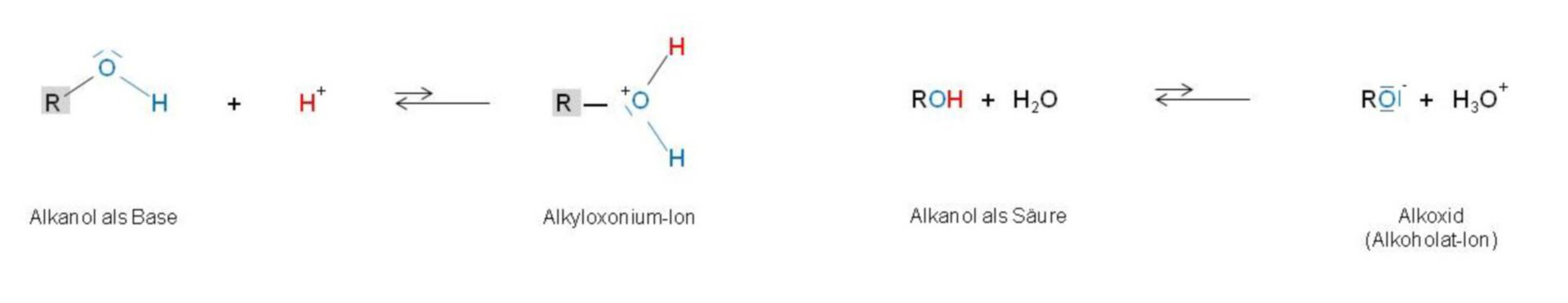Alkoxide (alcoholate ion)