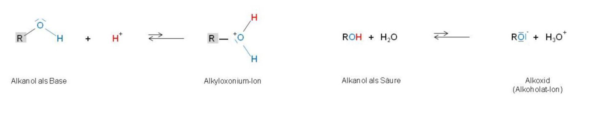 Alcossido (alcolato ion)