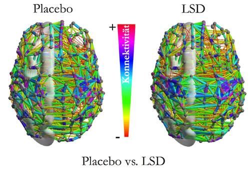 1616_LSD_BLOCK