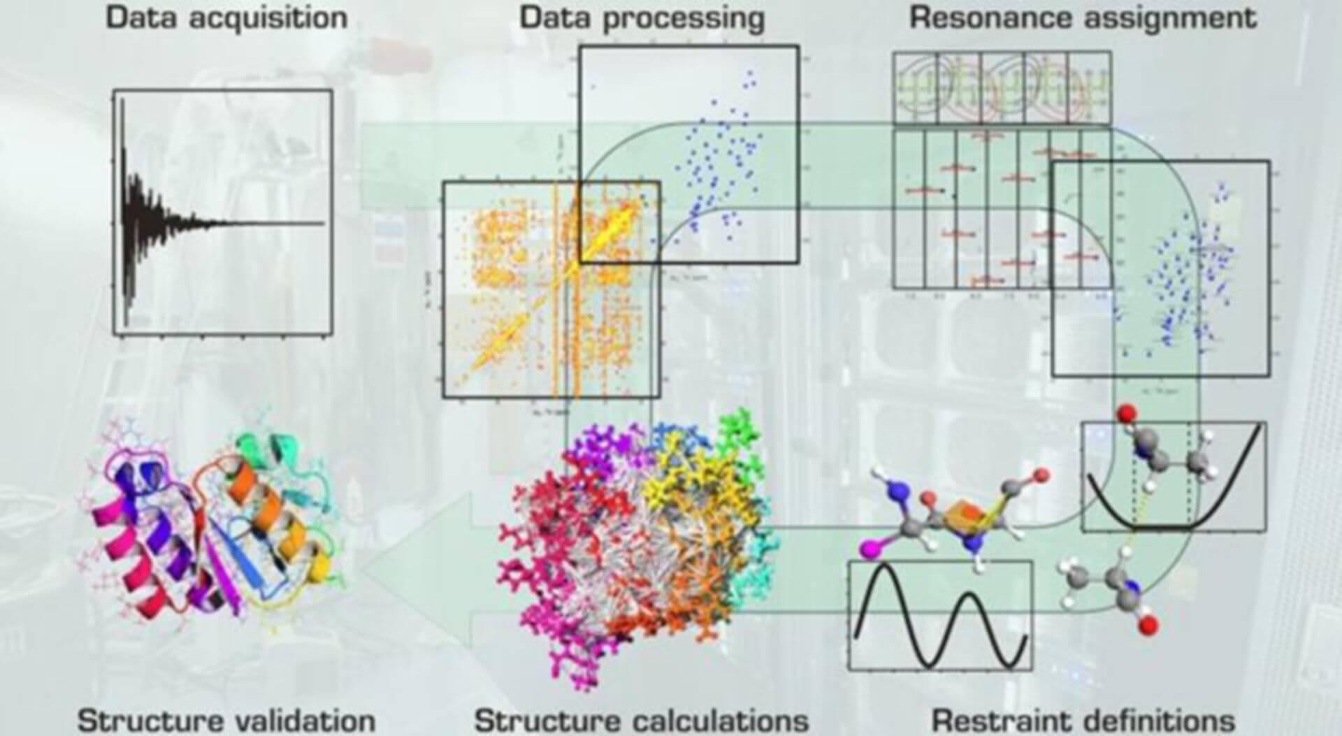 NMR data analysis