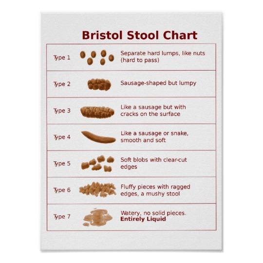 bristol_stool_chart_scale-r2ed7e09c80144