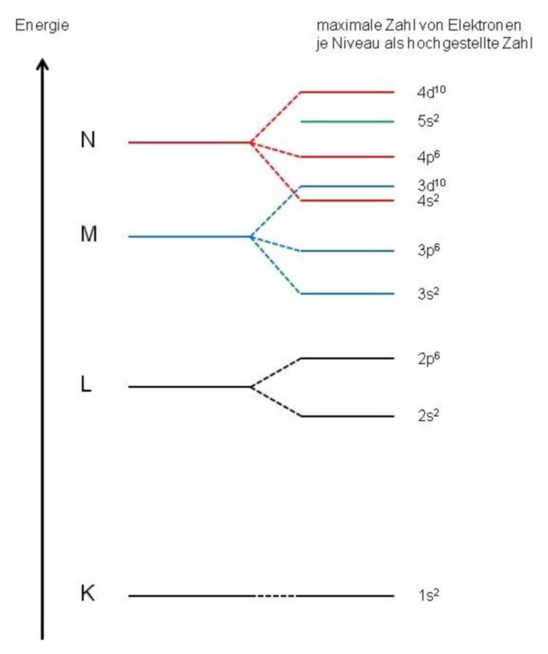 Schematic of energy levels of electrons in an atom