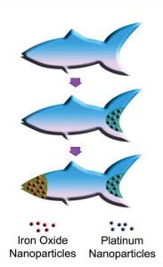 3D‐Printed Artificial Microfish