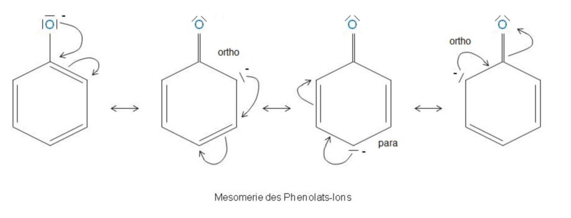 Mesomerism of the phenolate ion