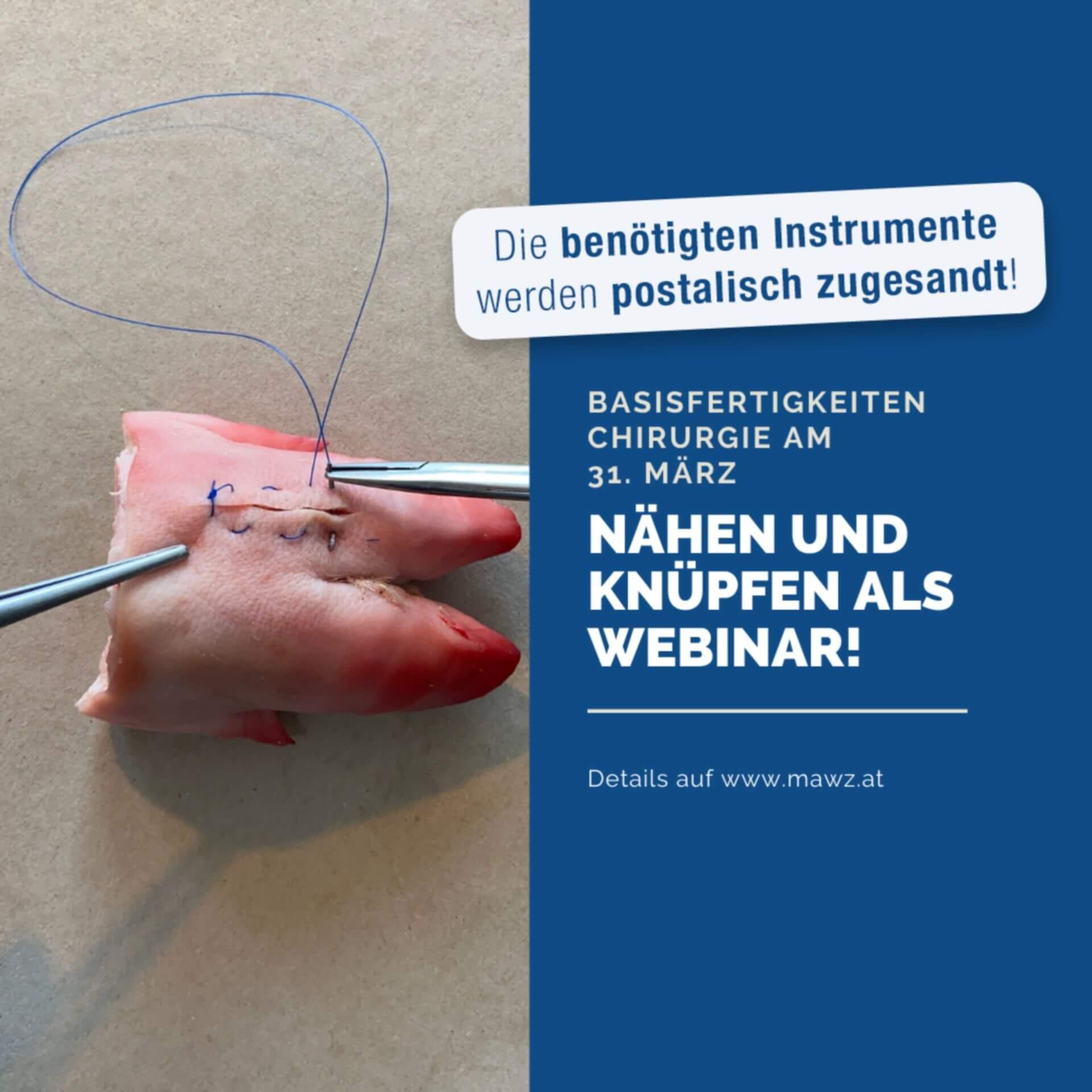 Basisfertigkeiten Chirurgie als Webinar