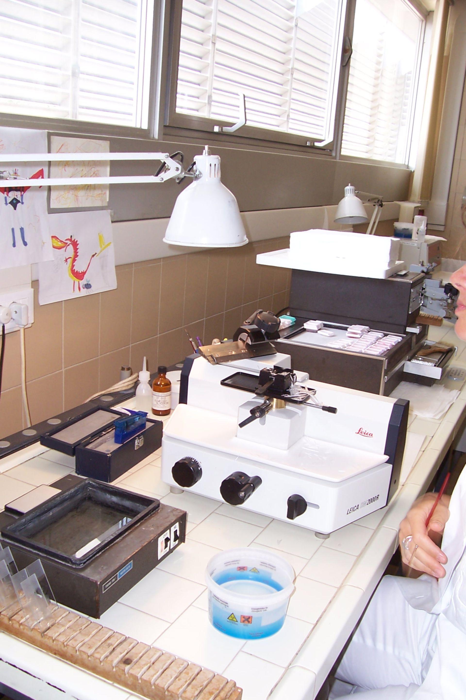 Histologie: Schnittstation / Mikrotom