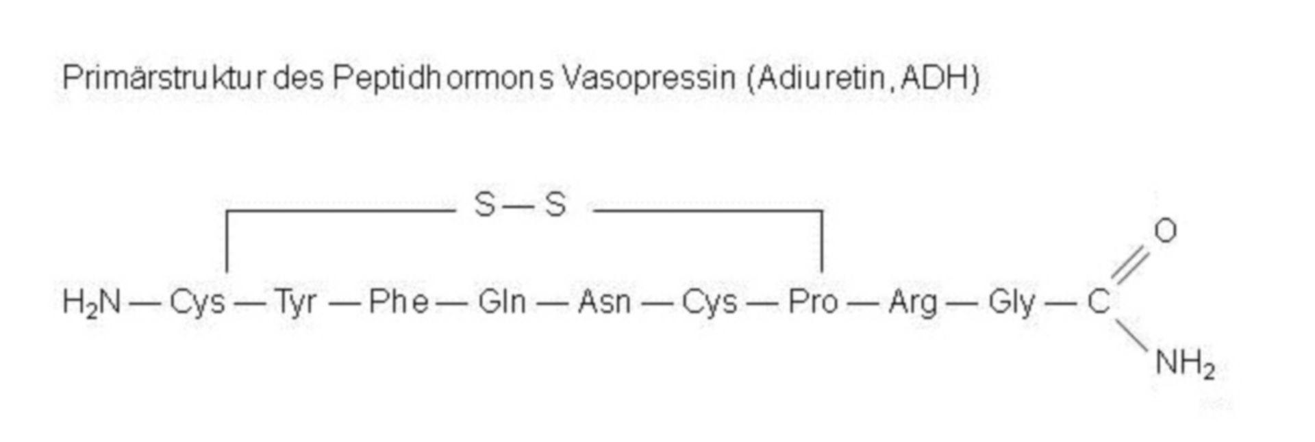 Primärstruktur - Peptidhormon Vasopressin