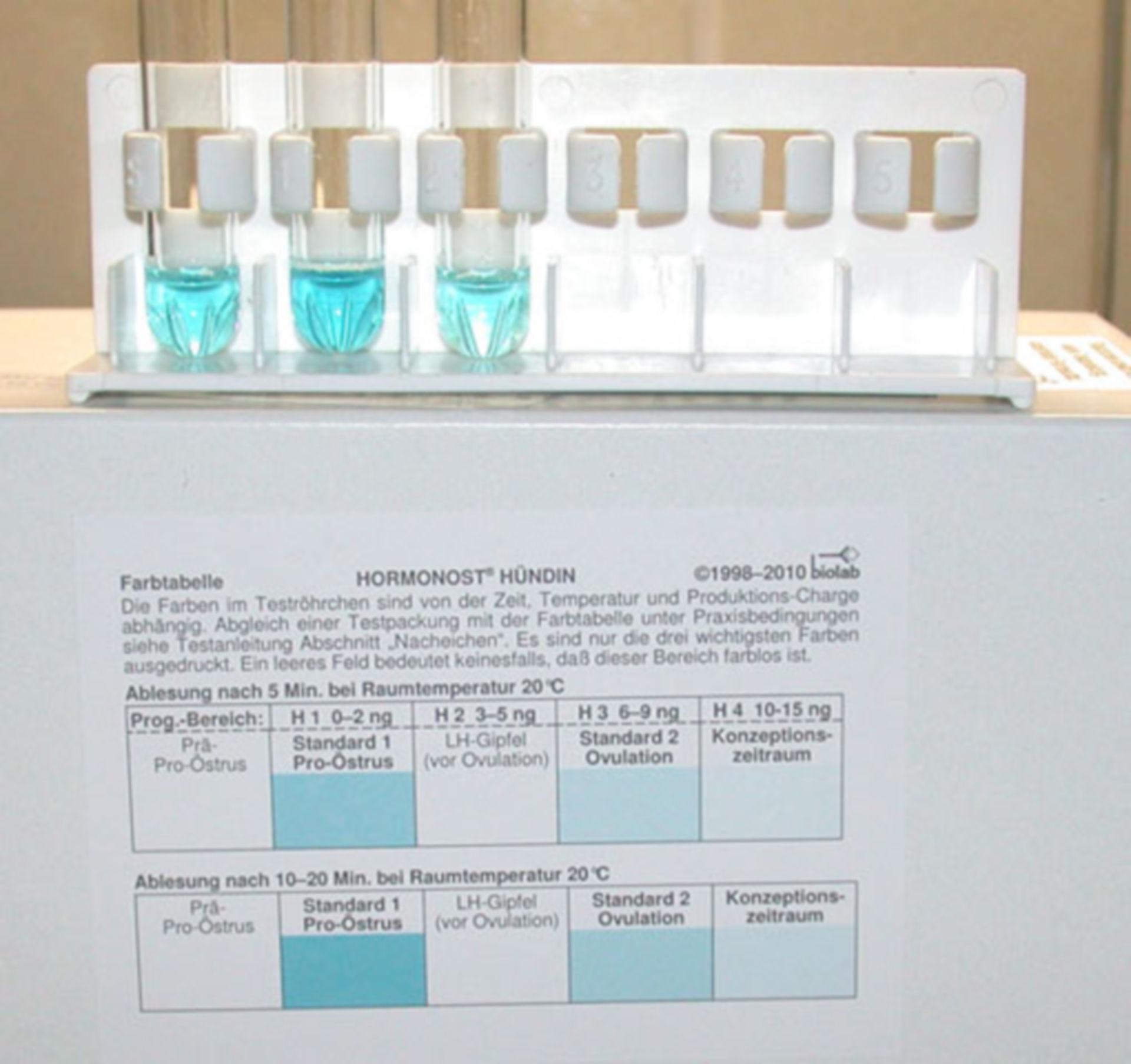 Progesterone test