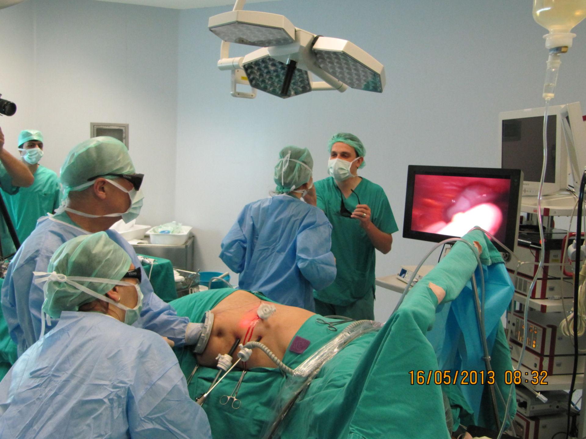 3D - Hand-assistierte laparoskopische Spendernephrektomie
