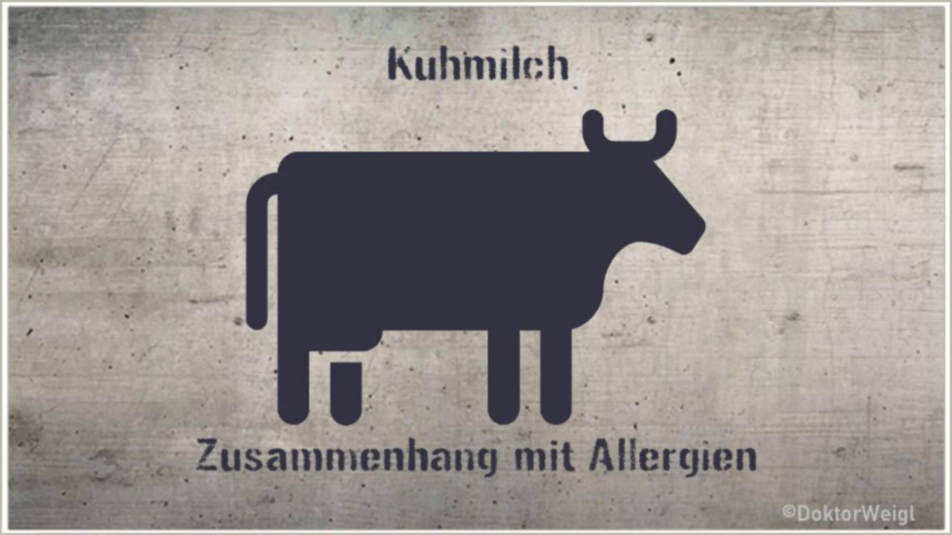 Die Milch machts – Schützt Kuhmilch vor Allergien?