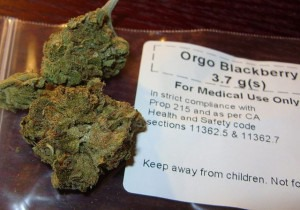 Medical_cannabis